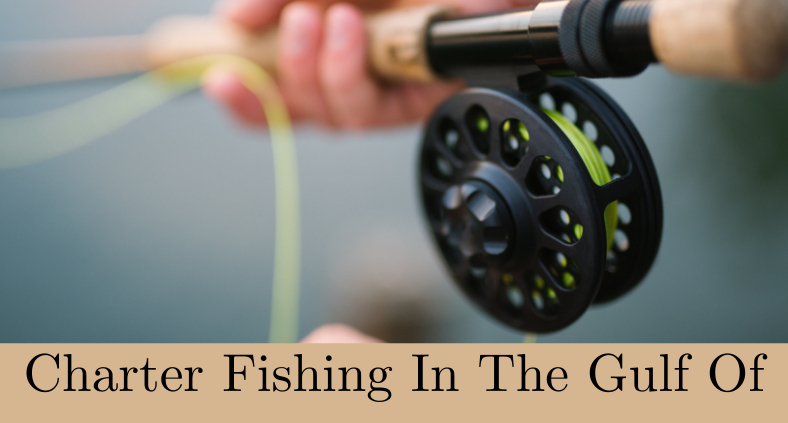 Charter Fishing in Gulf of Mexico For Yellowfin Tuna